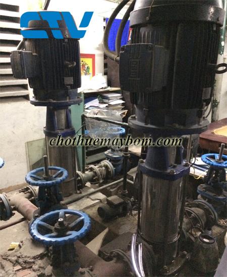 Cho thuê máy bơm trục đứng công suất cao tại Miền Bắc