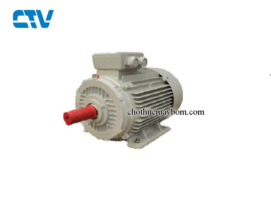 Động cơ điện ESC